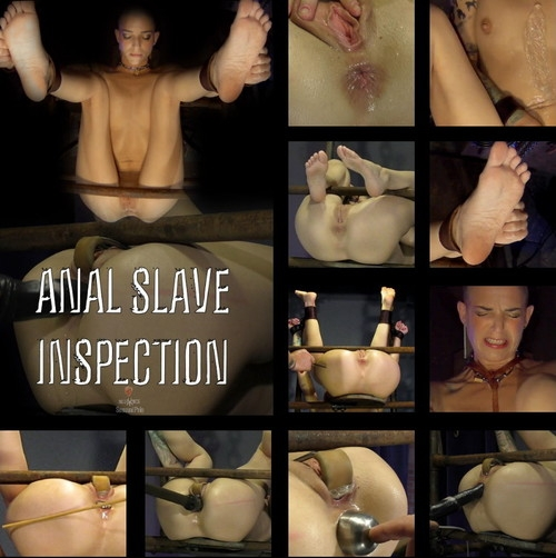Abigail Dupree, Master James - Anal Slave Inspection (2019 | FullHD) (3.43 GB)
