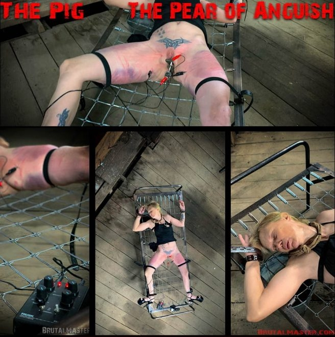 The Pig – The Pear Of Anguish (2019 | FullHD) (1.83 GB)