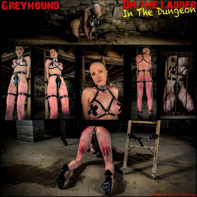 Greyhound – On The Ladder In The Dungeon (2019 | FullHD) (2.61 GB)