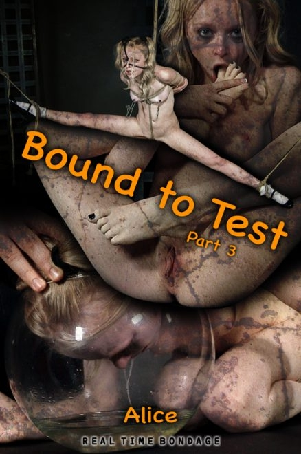 Bound to Test 3 (2020 | HD) (1.76 GB)