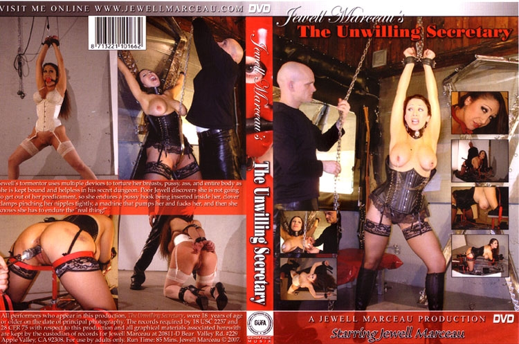 The Unwilling Secretary (2020 | SD) (832 MB)