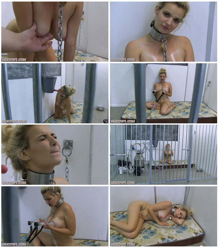 Dolly - Caged HuCow (2020 | FullHD) (967 MB)