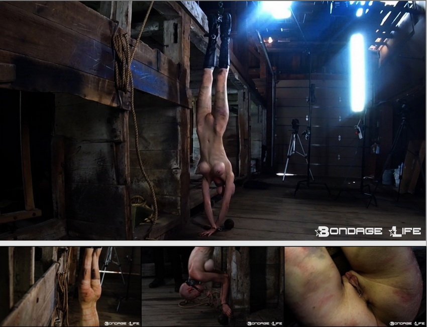 Brutalmaster Inverted Whipping (2020 | HD) (167 MB)
