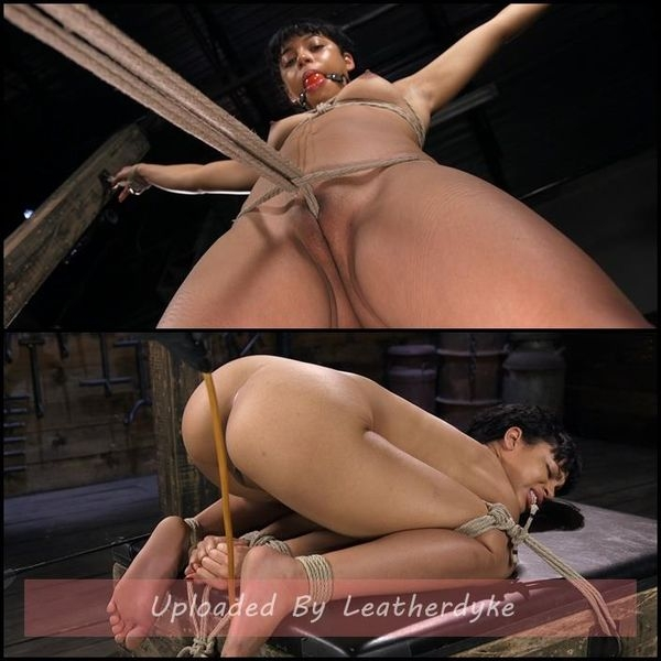 Exotic Newbie Gets Tied and Tormented at the Hands of The Pope (2020 | HD) (1.33 GB)