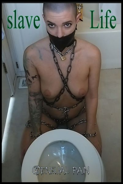 slave Life – Cleaning the Toilet (2020 | HD) (367 MB)