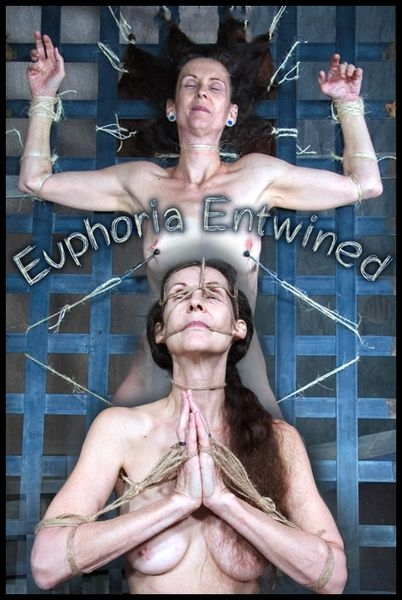Paintoy Emma - Euphoria Entwined (2016 | HD) (2.39 GB)