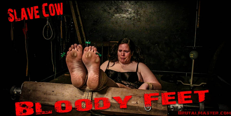 Bloody Feet - Slave Cow (2020 | FullHD) (187 MB)