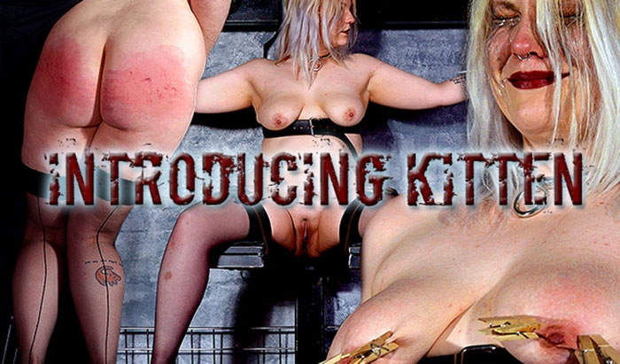 Introducing Kitten - Slave Kitten (2020 | FullHD) (3.18 GB)
