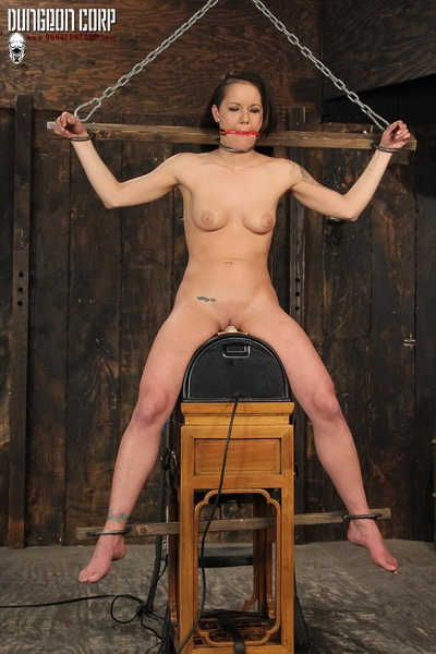 Sadie Dawson - Whipped on the Sybian (2020 | HD) (128 MB)