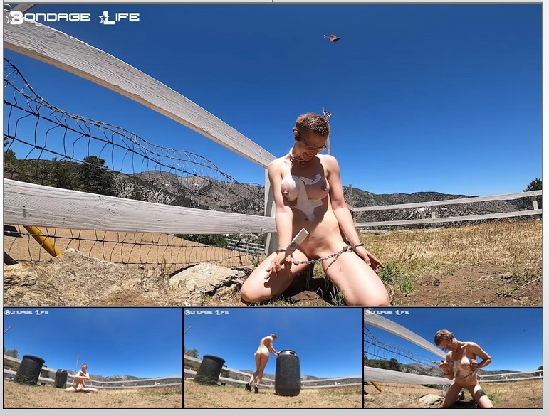 Rachel Greyhound - Painting Fences (2020 | HD) (373 MB)