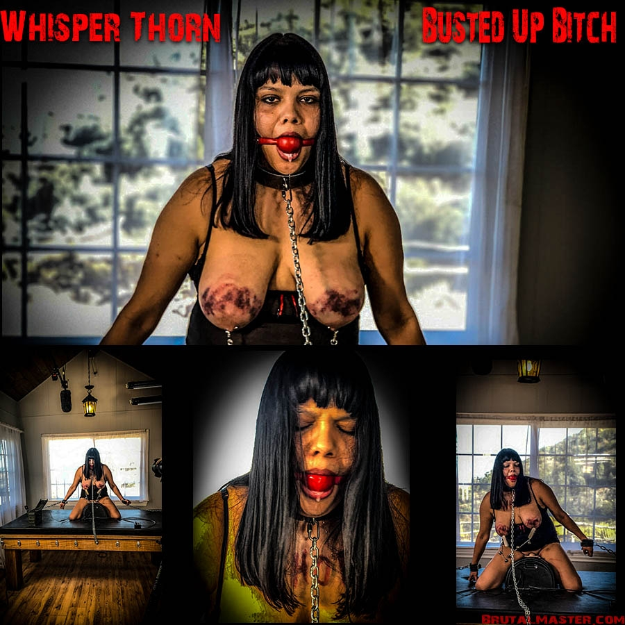 Whisper Thorn Busted Up Bitch (2020 | FullHD) (1.38 GB)